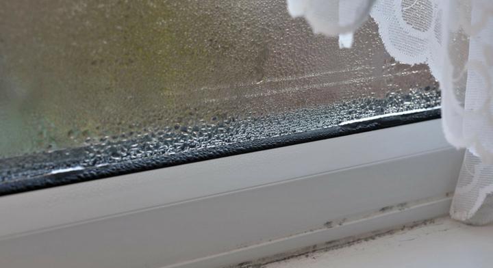 Windows Condensation