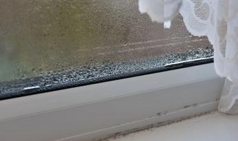 Windows Condensation Small
